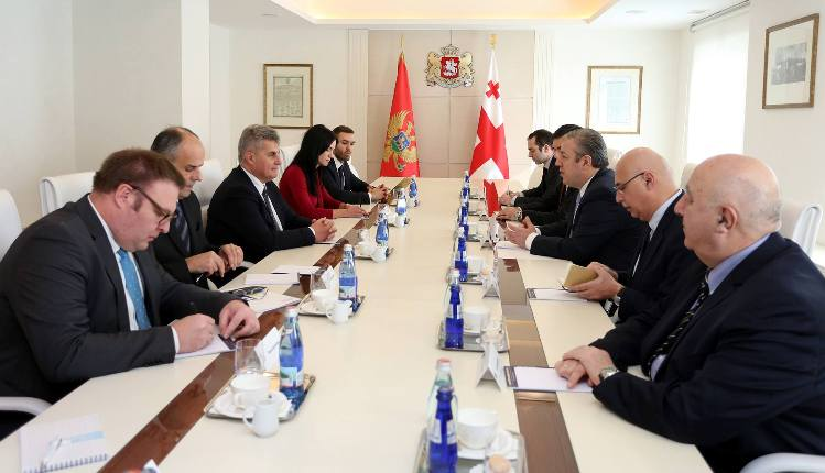Georgian Prime Minister held a meeting with Chairman of the Parliament of Montenegro Ivan Brajović